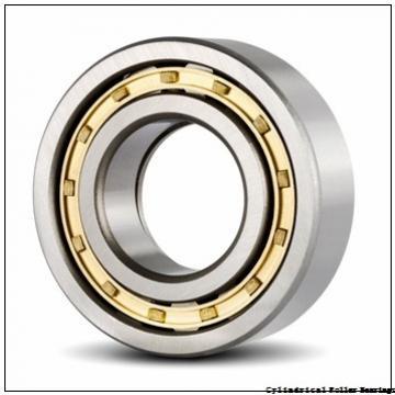 25 mm x 52 mm x 15 mm  NSK NJ 205 W Cylindrical Roller Bearings