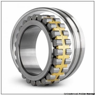 130 mm x 280 mm x 58 mm  NSK NJ326 M Cylindrical Roller Bearings