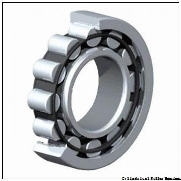 80 mm x 170 mm x 39 mm  NSK NJ316 M Cylindrical Roller Bearings