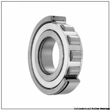 105 mm x 225 mm x 49 mm  NSK NJ321 M Cylindrical Roller Bearings