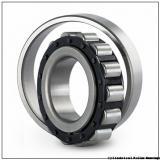 Link-Belt MU5210UV Cylindrical Roller Bearings